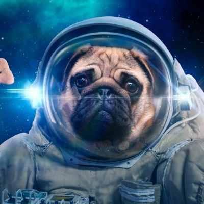ufo görev gücü nedir